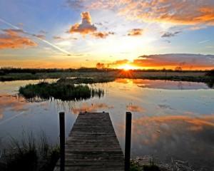 Cabragh Wetland